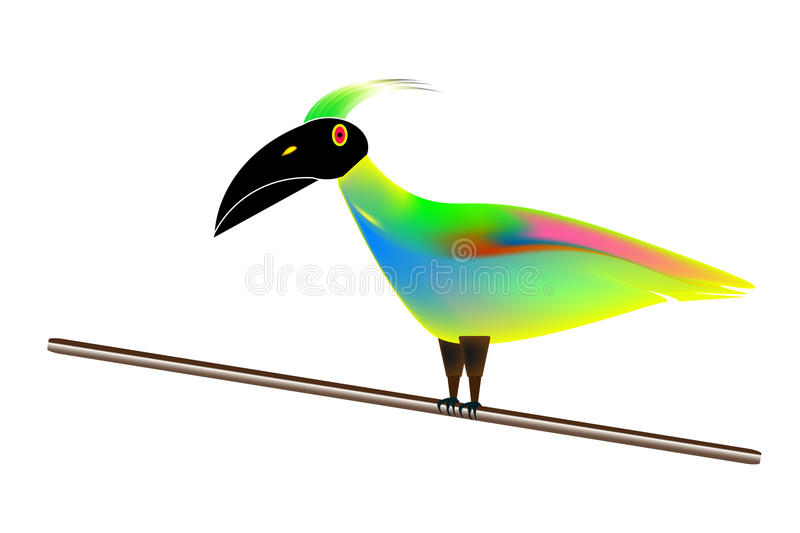 Tropical Bird Perched stock photography