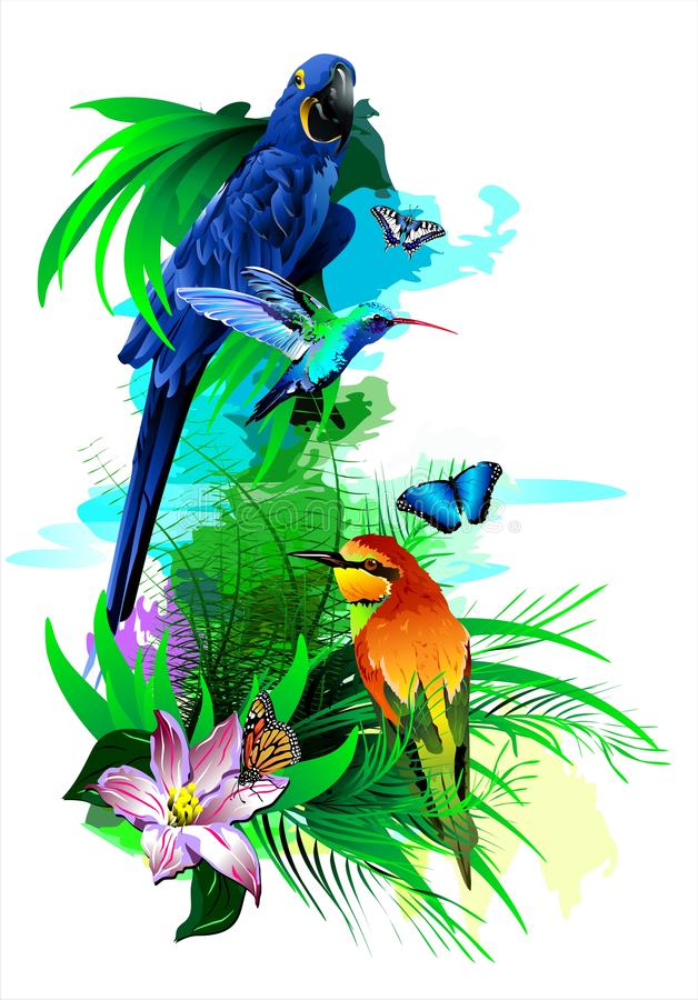 Tropical birds. (Vector). Vector image of exotic birds. Additional format: made in CorelDRAW X13. Color settings: Tools/color management/Optimized for the Web royalty free illustration