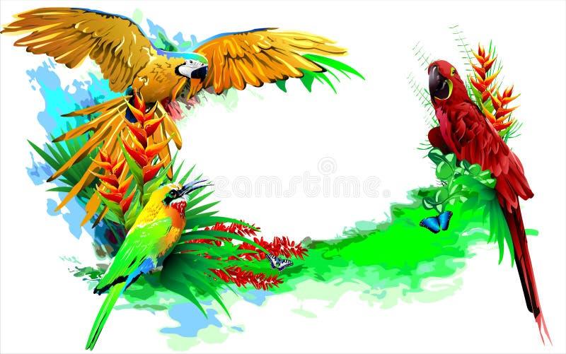 Tropical birds. (Vector) vector illustration