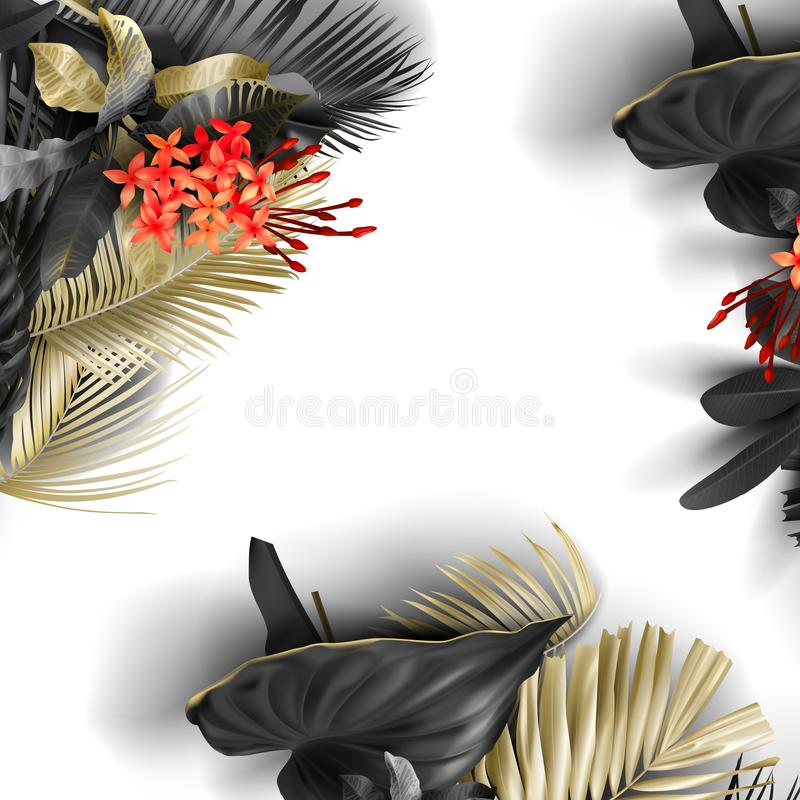 Free Tropical Black And Gold Leaves On White Background Royalty Free Stock Photos - 146880728