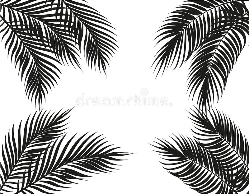Tropical black and white palm leaves on four sides. Set. Isolated on white background. illustration vector illustration
