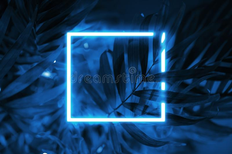 Tropical blue background neon square frame. stock image