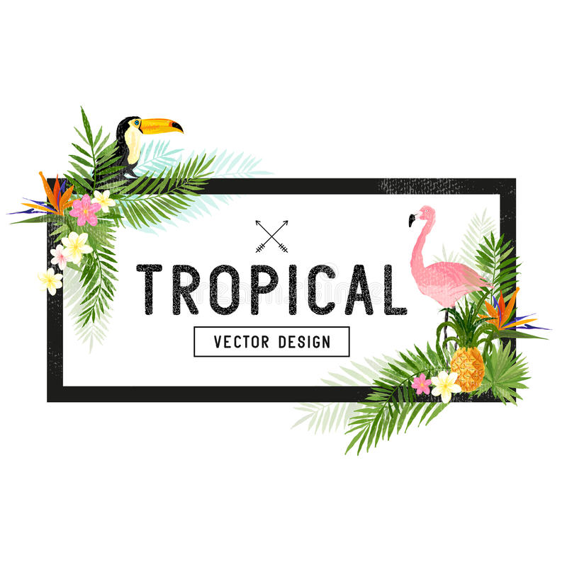 Tropical Border Design vector illustration