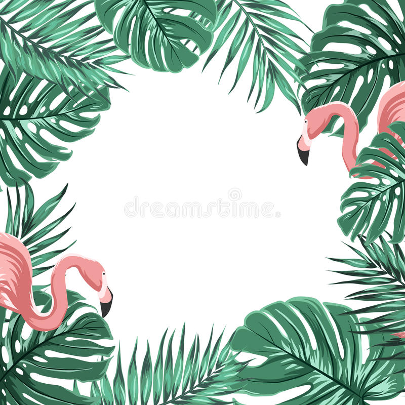 pink green tropical palm tree 28 images palm tree on  : tropical border frame leaves pink flamingo birds exotic template turquoise green jungle palm tree monstera space text 89489639 from grudge.reddingcaplumbing.com size 800 x 800 jpeg 137kB