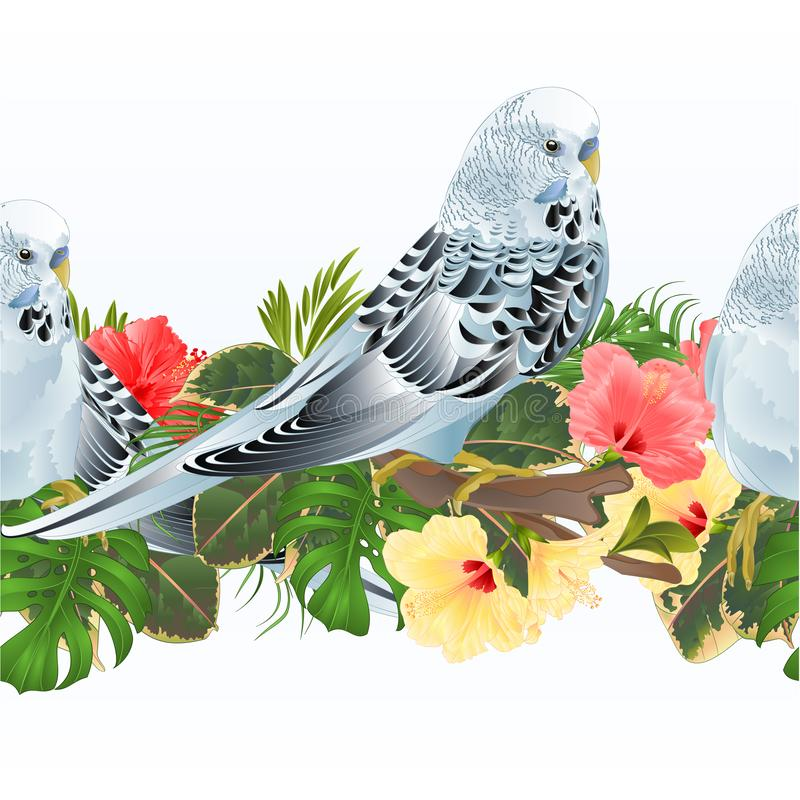 Tropical border seamless background birds Budgerigars, blue pet parakeets and hibiscus vector Illustration for use in interior royalty free illustration