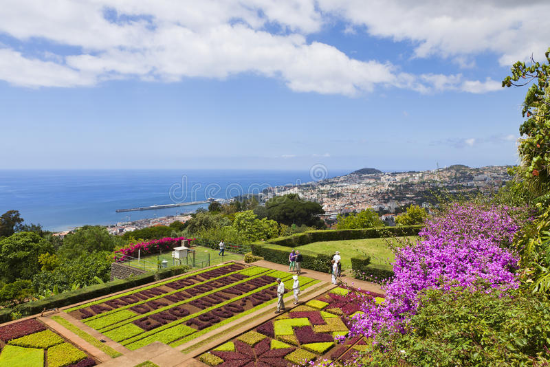 Tropical Botanical Garden in Funchal, Madeira island, Portugal royalty free stock images