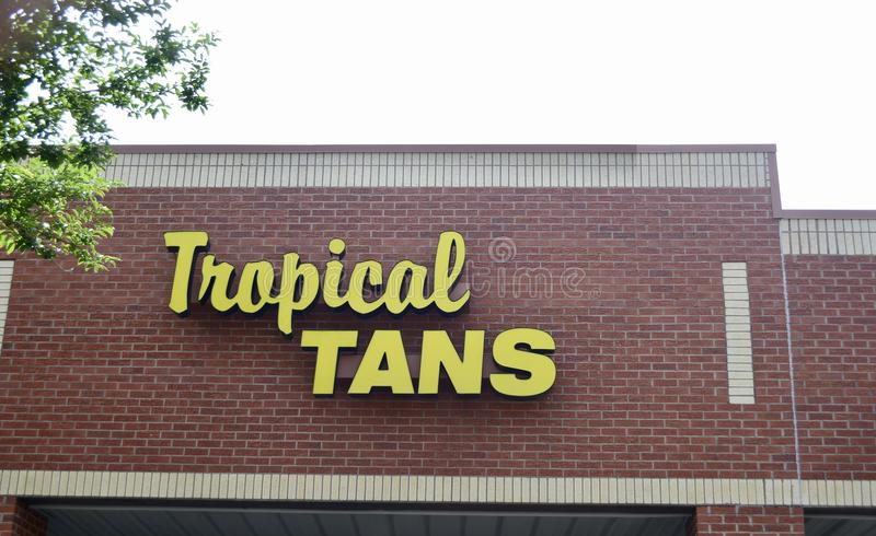 Tropical bronzea-se, Arlington, TN fotos de stock royalty free