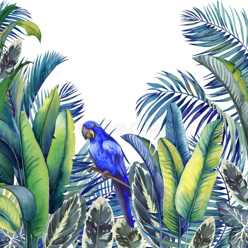 Tropical card with blue macaw parrot, palm trees, banana and calathea leaves. vector illustration