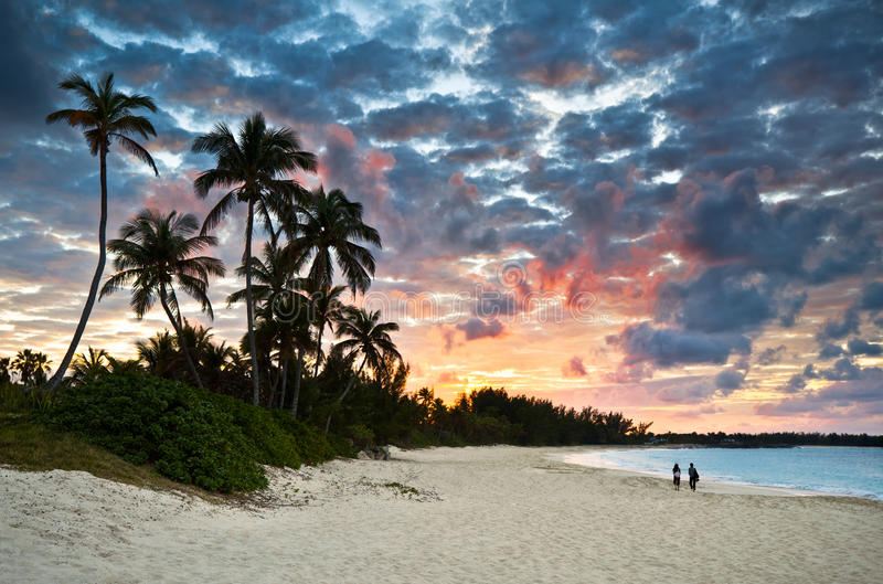 Tropical Caribbean Sand Beach Paradise at Sunset. Tropical Caribbean White Sand Beach Paradise at Sunset with palm trees and tourists royalty free stock photo