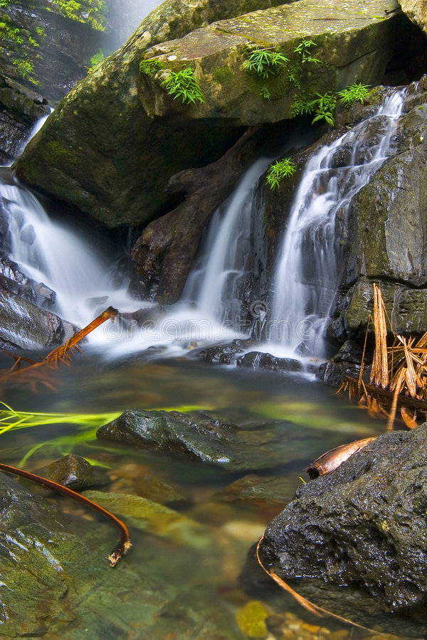 Free Tropical Cascades Stock Images - 1596164