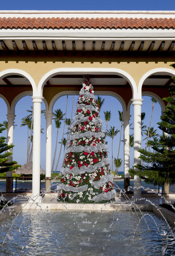 Download Tropical Christmas Royalty Free Stock Photography - Image: 17314437