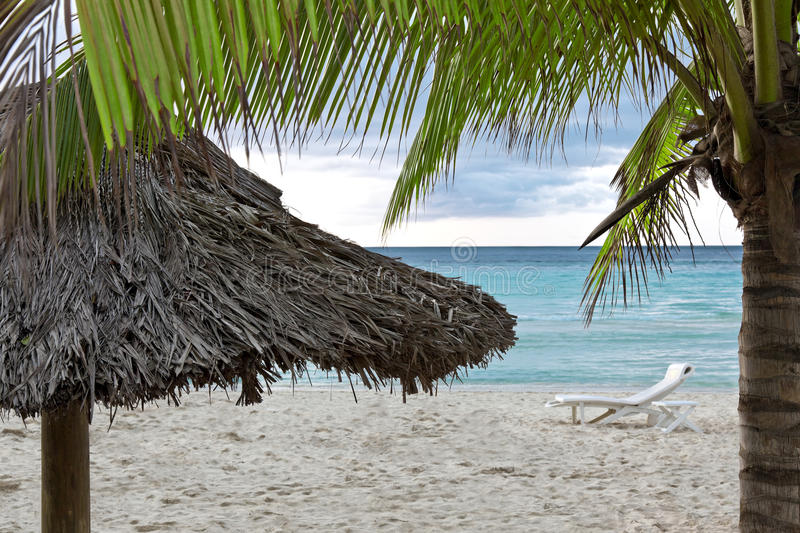 Tropical Coast Stock Photography