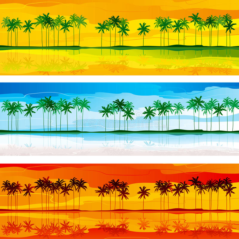 Download Tropical coast stock vector. Image of holiday, seascape - 29678850