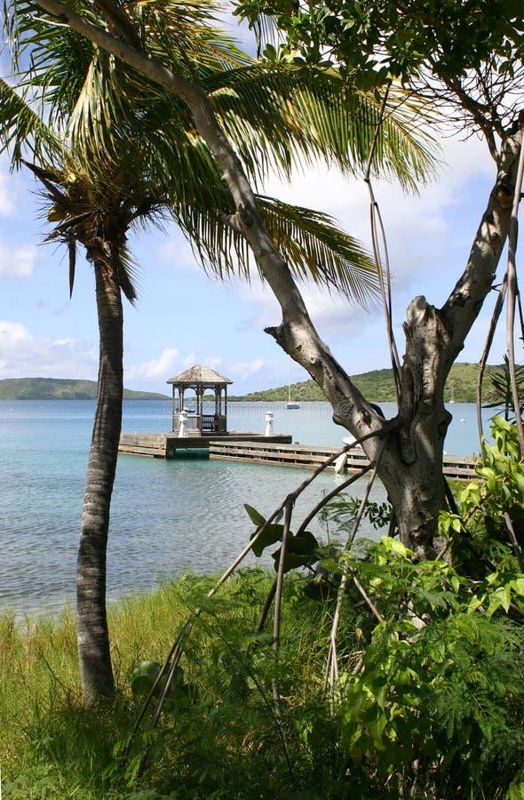 Tropical coastline royalty free stock photography