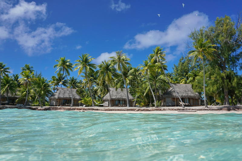 Tropical coastline bungalows and coconut trees Polynesia. Tropical coastline with waterfront bungalows and coconut trees seen from the lagoon, Tikehau atoll stock photos