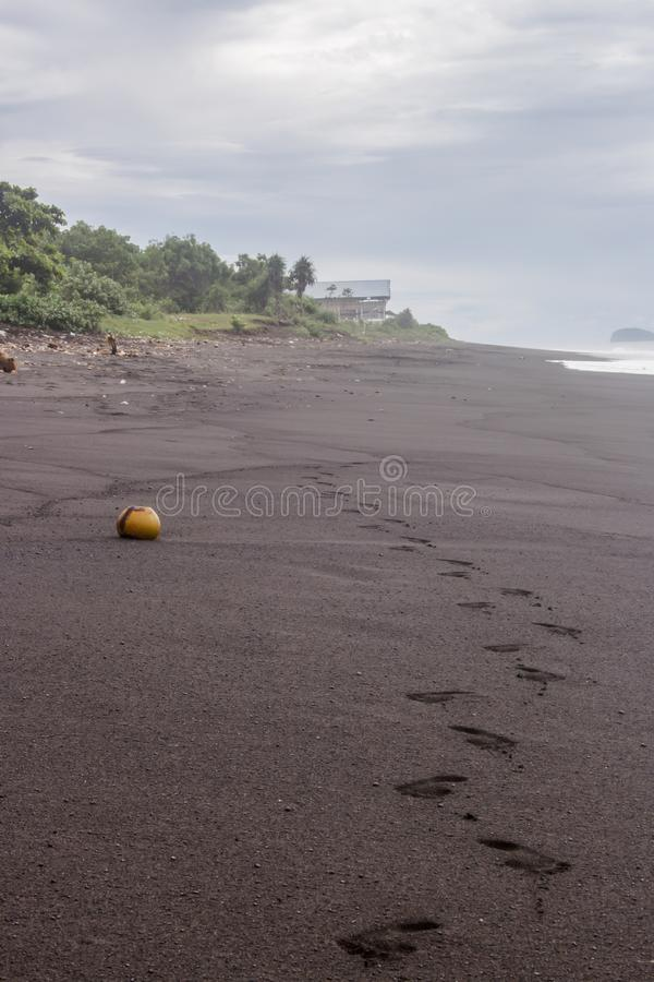 Tropical coastline of Pantai Wates. Footprints and a coconut shell lying in the black sand beach with hut in background stock images