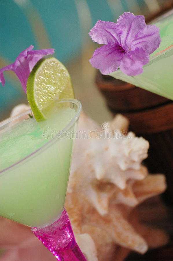 Tropical Cocktails 1 royalty free stock images