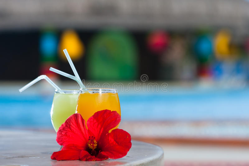 Download Tropical cocktails stock image. Image of glass, food - 14368427
