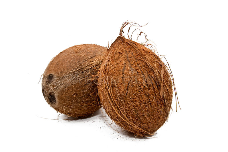 Download Tropical coconut stock photo. Image of objects, macro - 12673528