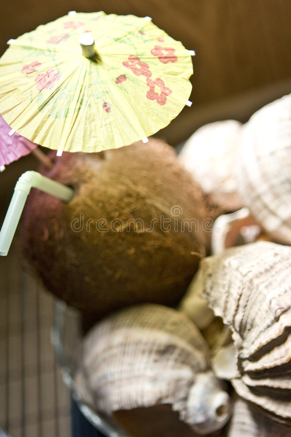 Tropical coconut drink royalty free stock photo