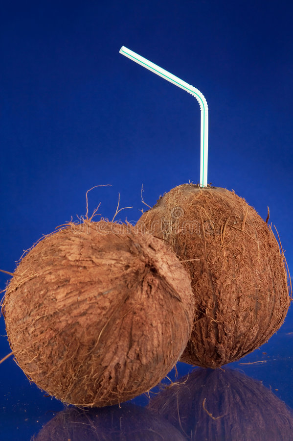 Tropical Coconut Drinks Stock Photography