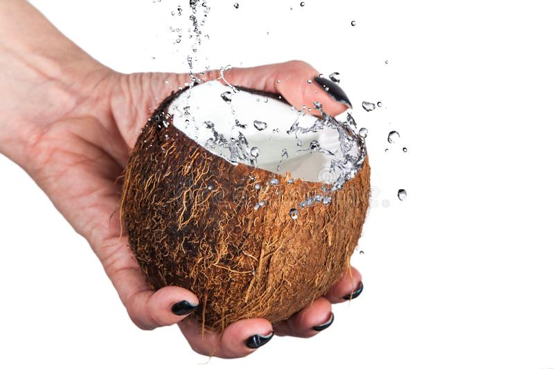 Tropical coconut with ice and splashing wate stock photos