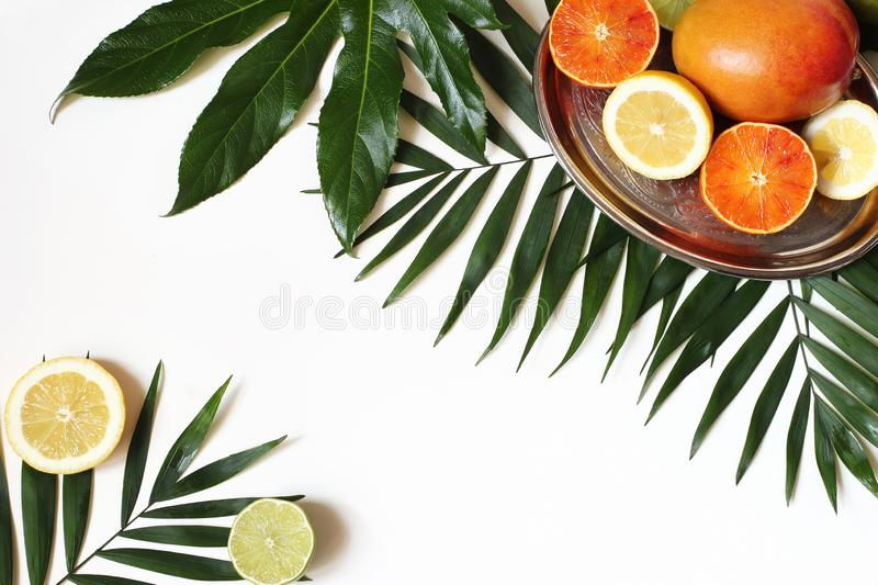 Tropical composition of mango, lemons, oranges, lime fruit and lush green palm and aralia leaves on silver plate. Isolated on white table background, exotic stock photo