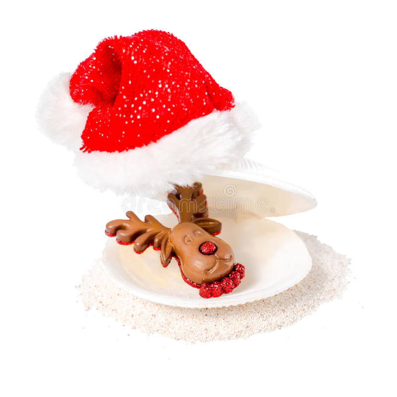 Tropical concept of new year with shell, chocolate reindeer and stock image