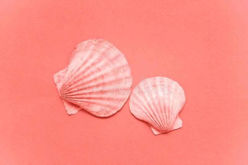 Tropical concept with seashell colored in trendy color of year 2019 Living Coral background stock photo