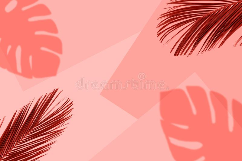 Tropical coral color background with exotic tropical palm leaves. Minimal summer concept. Flat lay vector illustration