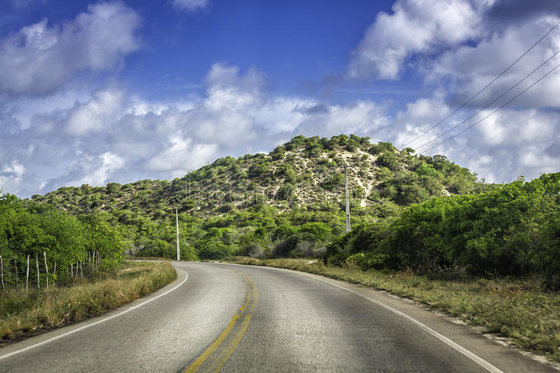 Tropical curve road near Natal,Brazil. Tropical curve road near Natal in Brazil royalty free stock images