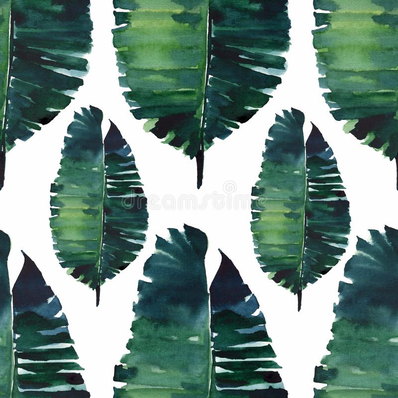 Tropical cute lovely wonderful hawaii floral herbal summer green palm leaves watercolor hand illustration. Perfect for textile, wallpapers, cards royalty free illustration