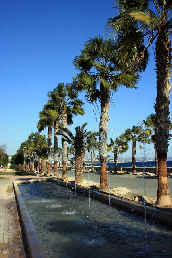 Tropical Cyprus royalty free stock photo