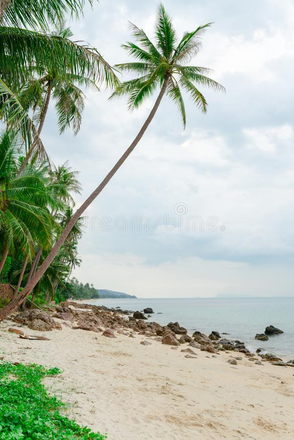 Download Tropical Deserted Beach With Cloudy Sky Stock Image - Image: 102084513