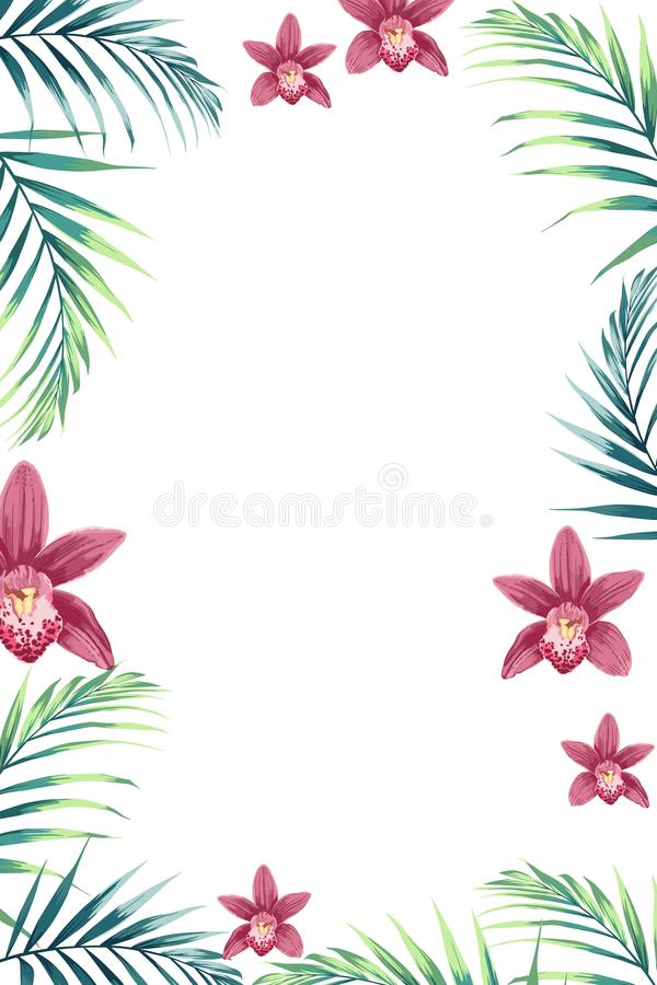 Tropical design border frame template with green jungle palm tree leaves and exotic orchid flowers couple. royalty free illustration