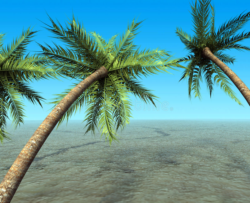 Download Tropical dream stock illustration. Image of plant, frond - 4788191