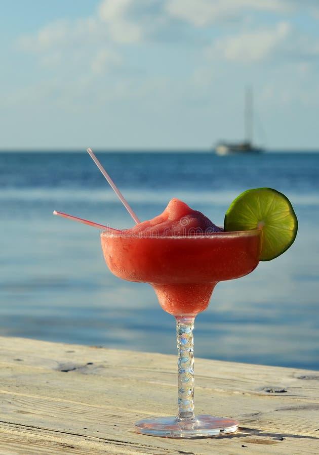 Tropical drink at seashore stock image