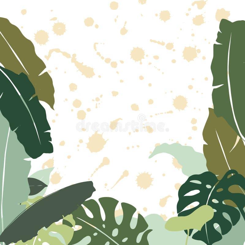 Tropical et éclabousse illustration libre de droits