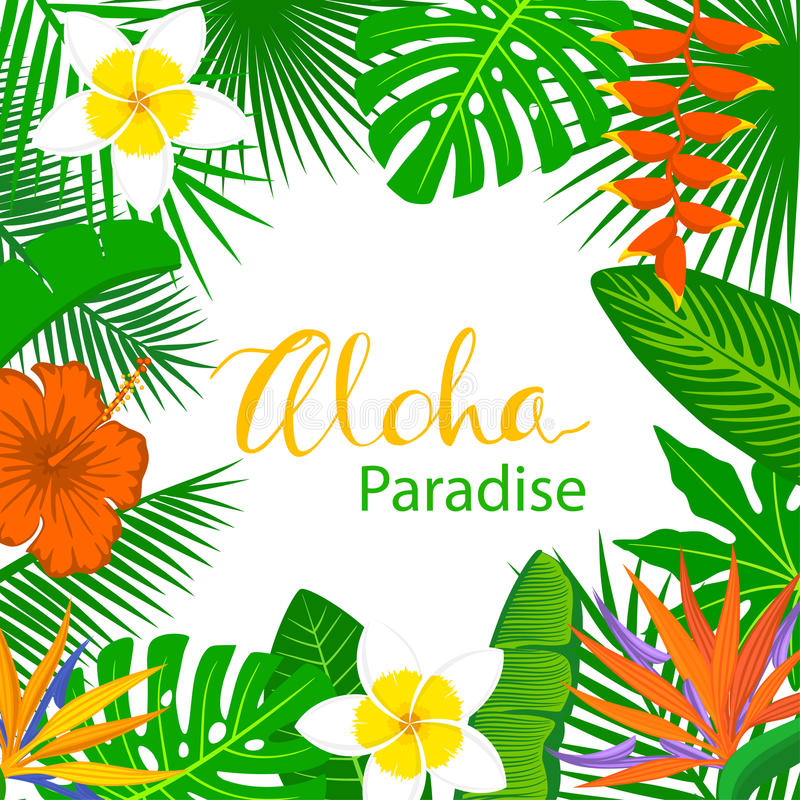 Tropical Background Frame With Exotic Jungle Leaves Stock