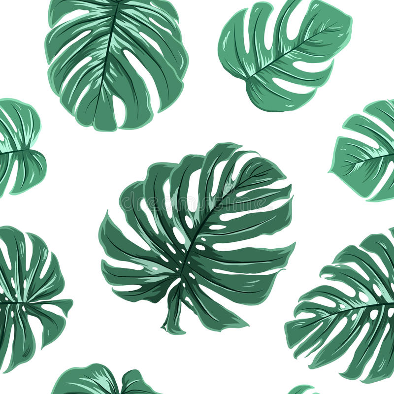 Tropical exotic monstera leaves seamless pattern royalty free illustration