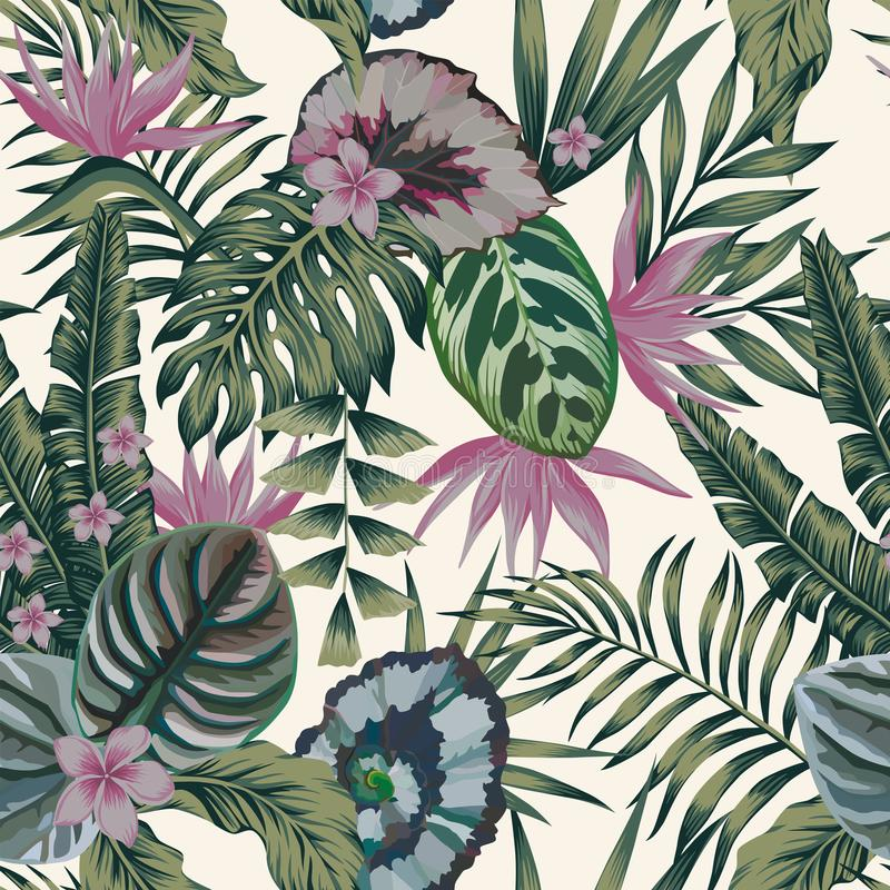 Tropical plants leaves flowers abstract color seamless white background royalty free illustration
