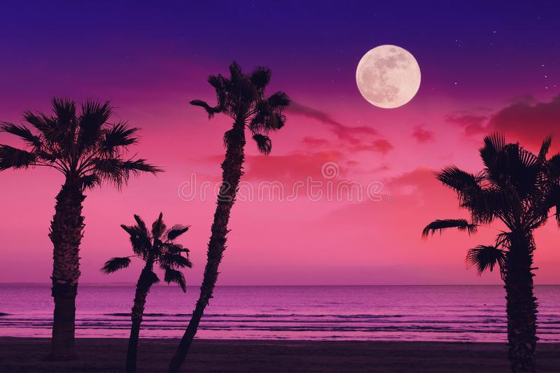 Tropical fantasy landscape with full moon at the beach royalty free stock photography