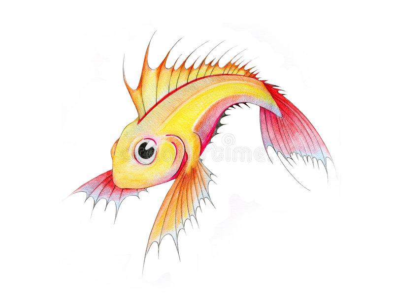 Download Tropical fish stock illustration. Image of drawing, painting - 9767