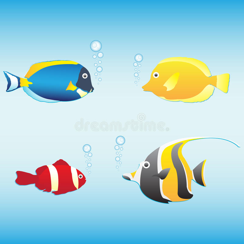 Tropical Fish Collection For Yor Design Stock Photo