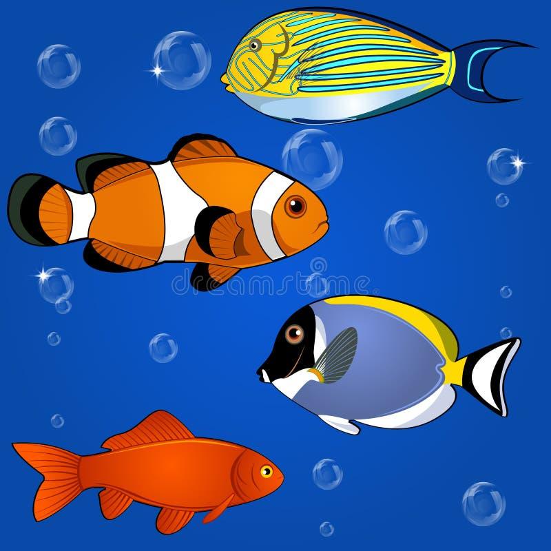 Download Tropical Fish Set Royalty Free Stock Photo - Image: 32078255
