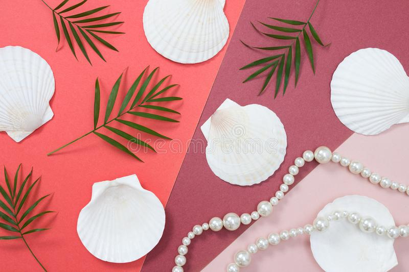 Tropical flat lay with seashells and pearls stock photography