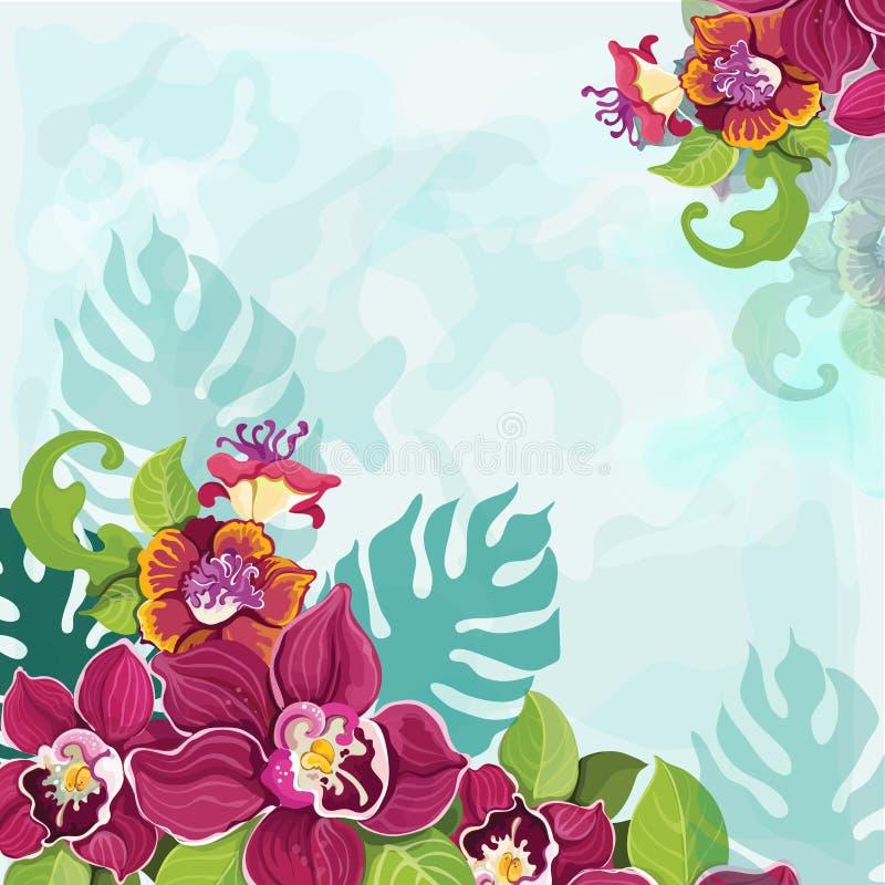 Download Tropical flower background stock vector. Illustration of rainforest - 39503283