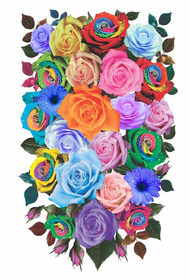 Flower ornamen 20 royalty free stock images