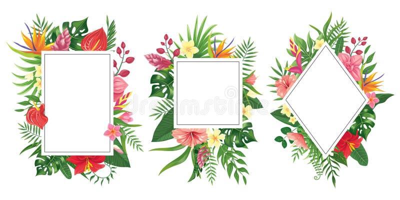 Tropical flower frames. Botanical tropics borders, tropic flowers invitation frame and summer plants green leaves vector stock illustration