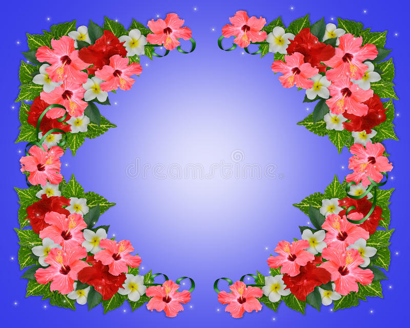 Tropical Flowers background royalty free illustration